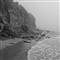 California Fog in Black and White