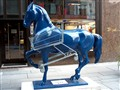 Lipizaner horse