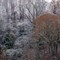 snow hillside