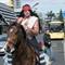 20170804 New Zealand Tauranga Horse Indian Transport 12