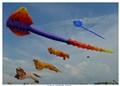 St Annes Annual Kite Festival