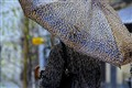 tiger's umbrella