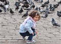 little girl playing with birds