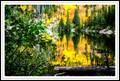 Bear Lake Mirror