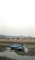 Blue Boat Low Tide