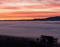 Sea of Fog at Sunrise