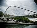 Not a Polymer Bridge