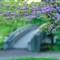 Knoch Knolls Park
