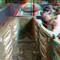 Amon Coffins 3D