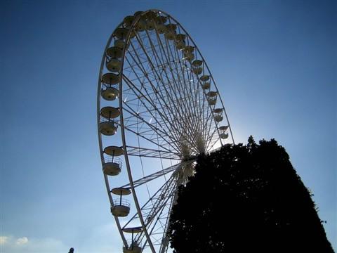 Wheel (47491031)