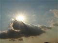 Starry Sun