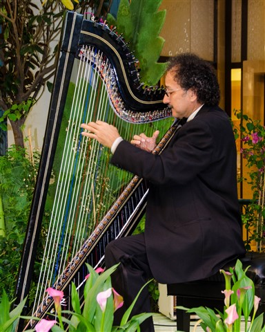 Harpist at the Bellagio