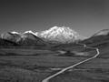 P6204931 - Mt McKinley