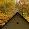Autumn in Marianka