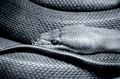 Textured Python skin