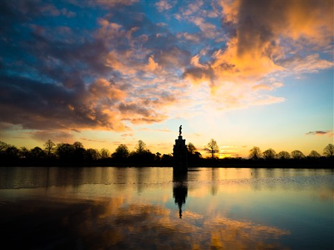 Bushy Park lake at sunrise