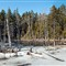 Pano-Ice-Out-ANP-01-031010