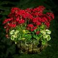 Home Flower 1-1