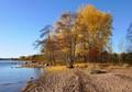 Fall at the coast