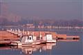 belmont_harbor_morning