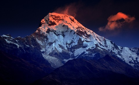 Annapurna Blushed