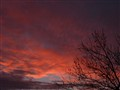 purple big sky