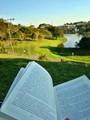 Reading amid nature