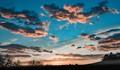 Coyote_Sunrise