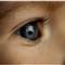 Arn__080927__3c20570_Julia's_eye_800x2