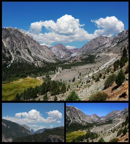 Tioga Pass DP