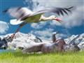 Leda and Stork