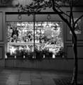lighting store, Haymarket, Sydney, NSW