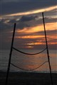Net sunset_7784