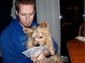 Doggie Card Shark