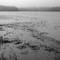 tn_Bass River 2