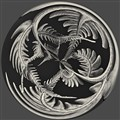 Circular Fern