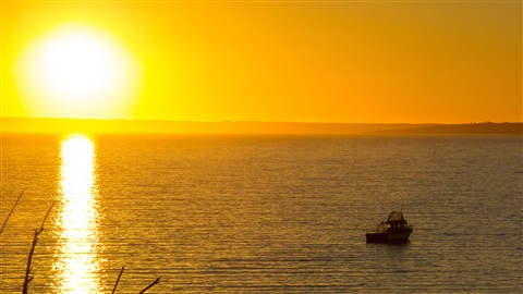 Kingscote Sunrise