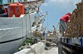 Sunda Kelapa - Old Jakarta Port Still Working