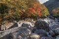 Fall at Jirisan