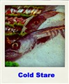 Cold Stare