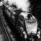 Dorset Coast Express