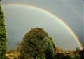 Rainbow com