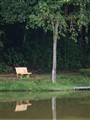 Peaceful Benches
