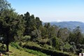 Ooty - Green Land