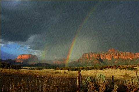 Zion National Park Rain Storm