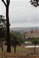 The first rain.