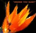"""Orange you Glad ?"""