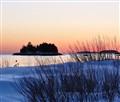 Snowy Shore