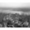 c_Hudson River-a_1200