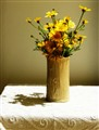 Chrysanthemum Coronaium in dinningroom